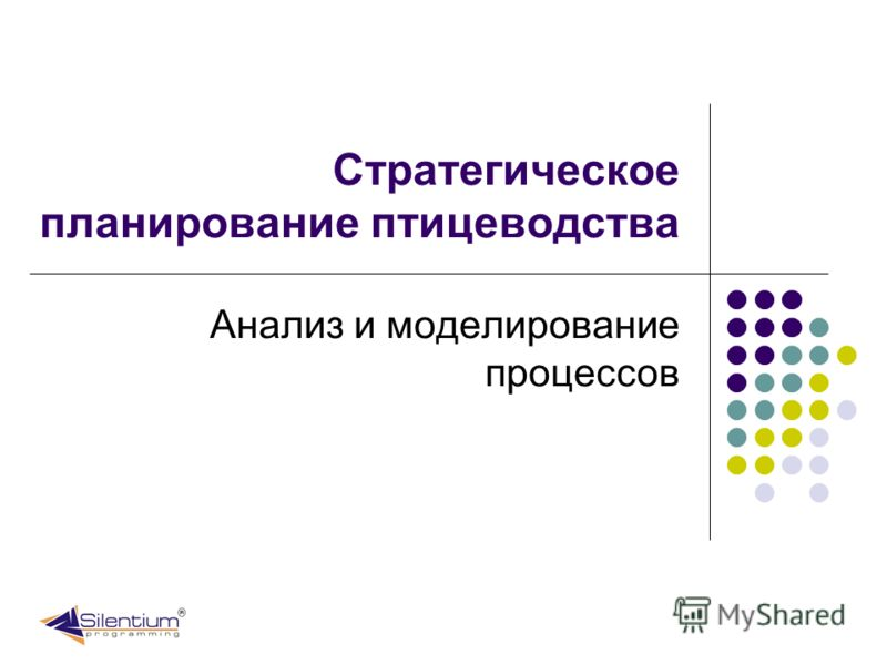Стратегическое планирование птицеводства Анализ и моделирование процессов