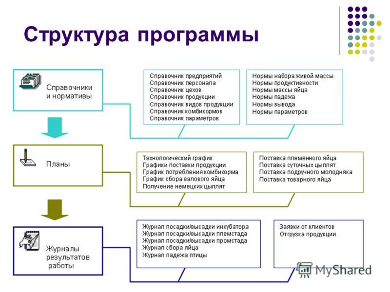 29 Структура программы