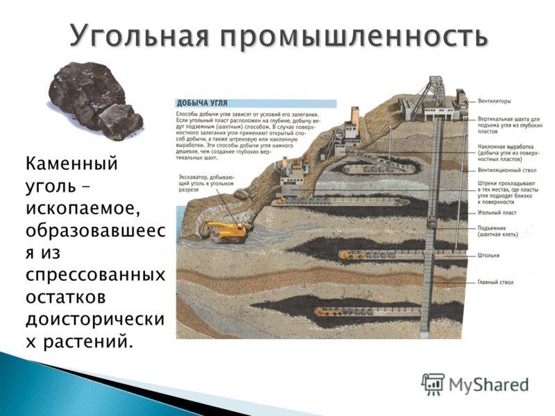 Каменный уголь – ископаемое, образовавшеес я из спрессованных остатков доисторически х растений.