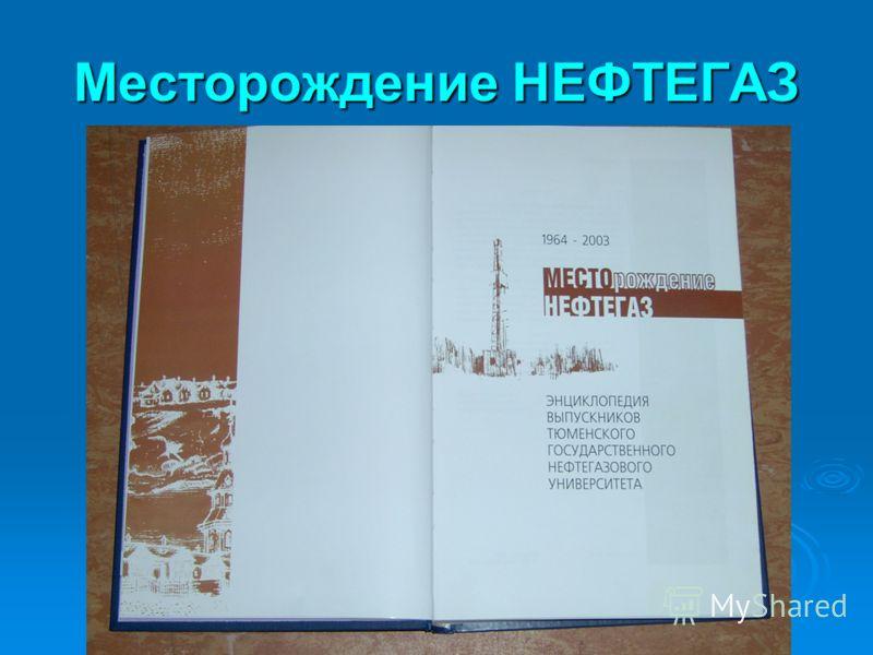 Месторождение НЕФТЕГАЗ