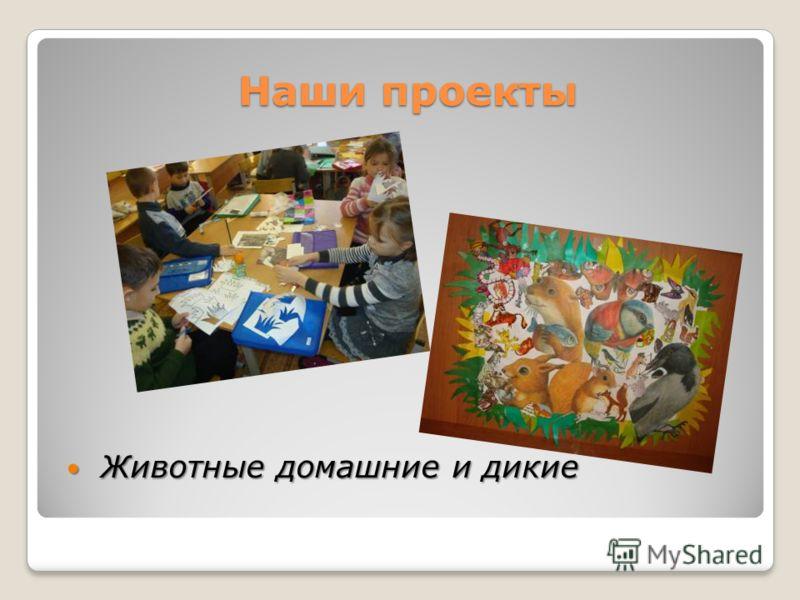 Наши проекты Животные домашние и дикие Животные домашние и дикие