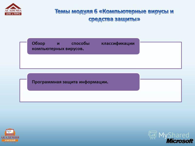 . Обзор и способы классификации компьютерных вирусов.. Программная защита информации.