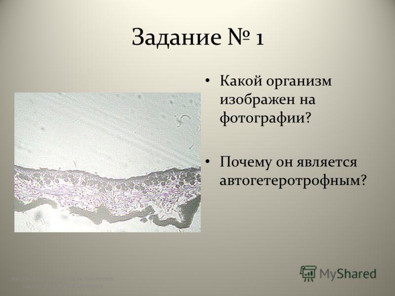 Задание 1 Какой организм изображен на фотографии? Почему он является автогетеротрофным? Аксёнова А.Ю., учитель биологии, школа 123, г.Н.Новгород