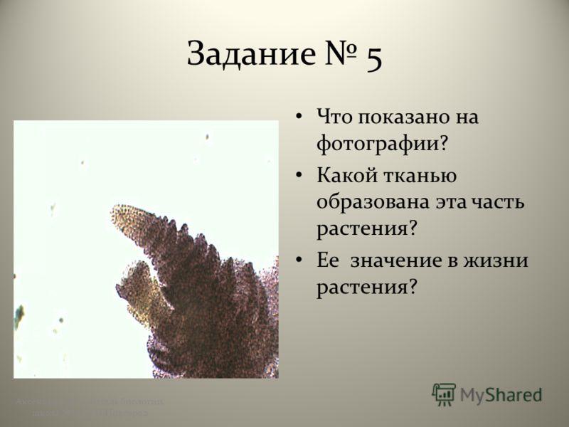 Задание 5 Что показано на фотографии? Какой тканью образована эта часть растения? Ее значение в жизни растения? Аксёнова А.Ю., учитель биологии, школа 123, г.Н.Новгород