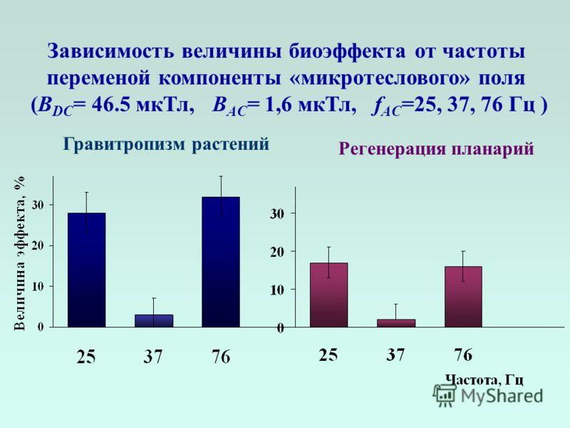 Зависимость величины биоэффекта от частоты переменой компоненты «микротеслового» поля (В DC = 46.5 мкТл, B AC = 1,6 мкТл, f AC =25, 37, 76 Гц ) Гравитропизм растений Регенерация планарий