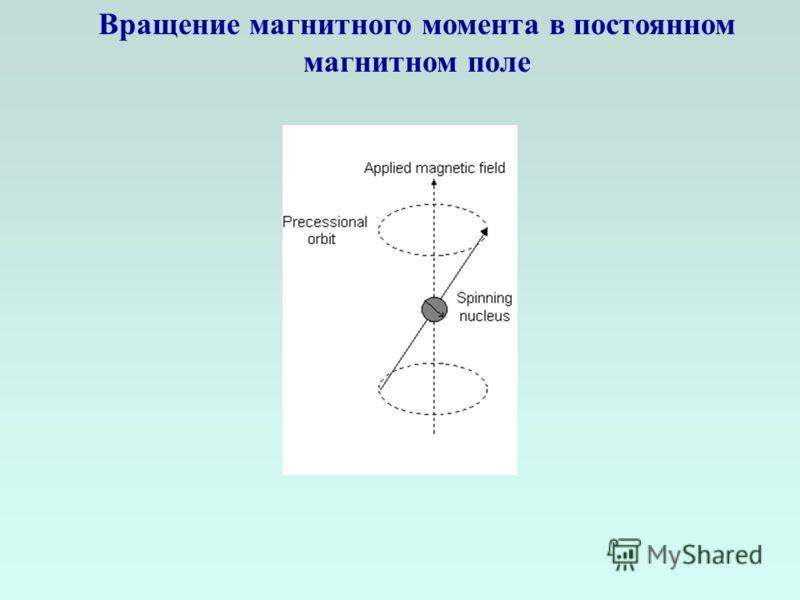 Вращение магнитного момента в постоянном магнитном поле