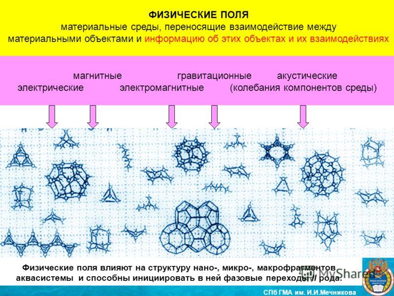 ФИЗИЧЕСКИЕ ПОЛЯ материальные среды, переносящие взаимодействие между материальными объектами и информацию об этих объектах и их взаимодействиях магнитные гравитационные акустические электрические электромагнитные (колебания компонентов среды) СПб ГМА