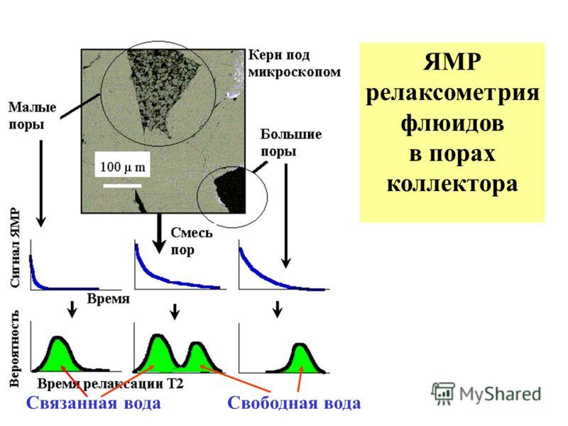 ЯМР релаксометрия флюидов в порах коллектора ЯМР релаксометрия флюидов в порах коллектора Связанная водаСвободная вода