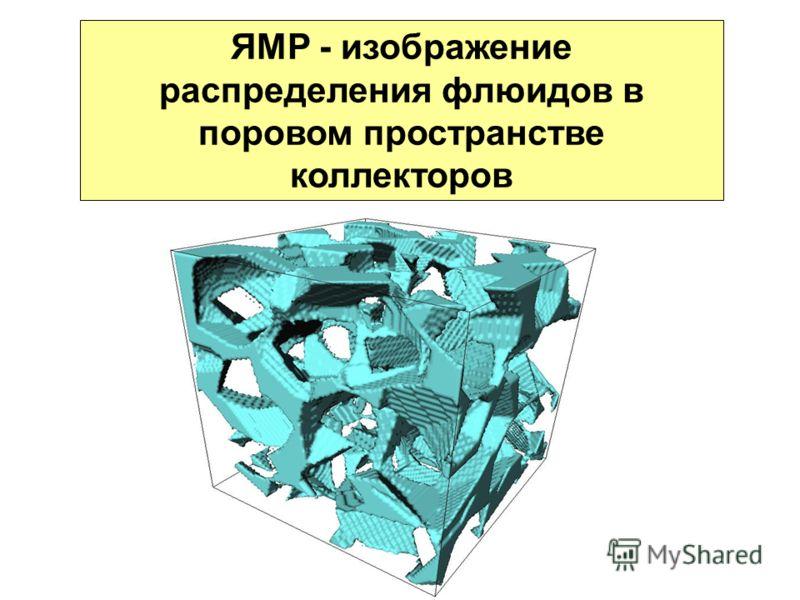 ЯМР - изображение распределения флюидов в поровом пространстве коллекторов