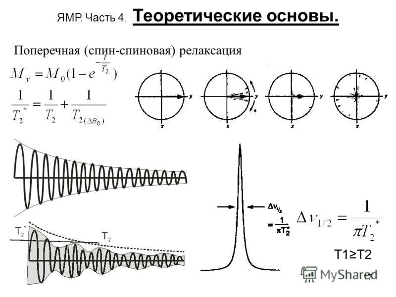 17 ЯМР. Часть 4. Теоретические основы. Поперечная (спин-спиновая) релаксация T1T2