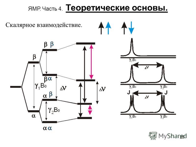 25 ЯМР. Часть 4. Теоретические основы. Скалярное взаимодействие.