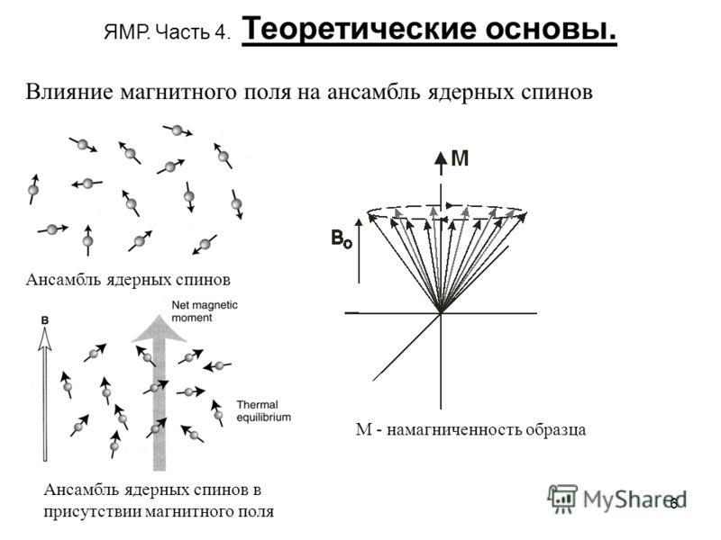 6 ЯМР. Часть 4. Теоретические основы. Ансамбль ядерных спинов Ансамбль ядерных спинов в присутствии магнитного поля Влияние магнитного поля на ансамбль ядерных спинов М - намагниченность образца