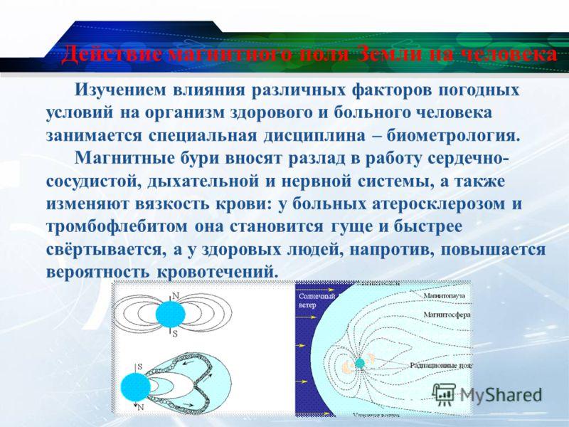 Действие магнитного поля Земли на человека Изучением влияния различных факторов погодных условий на организм здорового и больного человека занимается специальная дисциплина – биометрология. Магнитные бури вносят разлад в работу сердечно- сосудистой,