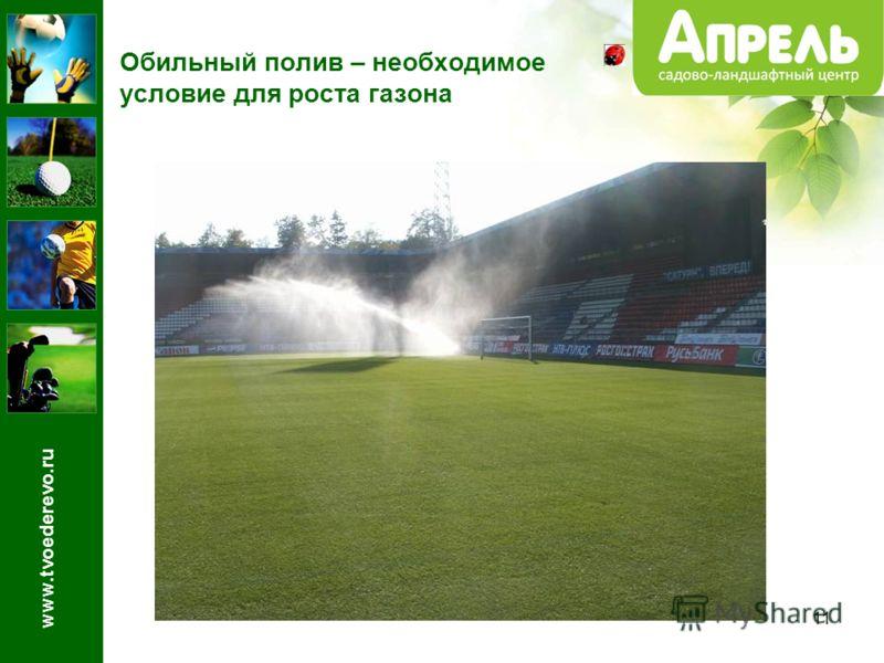 11 Обильный полив – необходимое условие для роста газона www.tvoederevo.ru