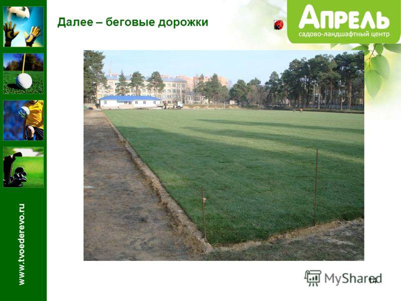 14 Далее – беговые дорожки www.tvoederevo.ru