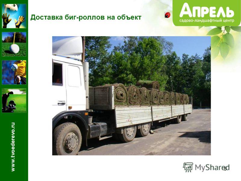 5 Доставка биг-роллов на объект www.tvoederevo.ru