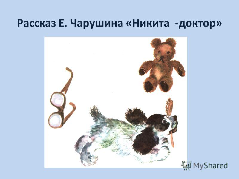 Рассказ Е. Чарушина «Никита -доктор»