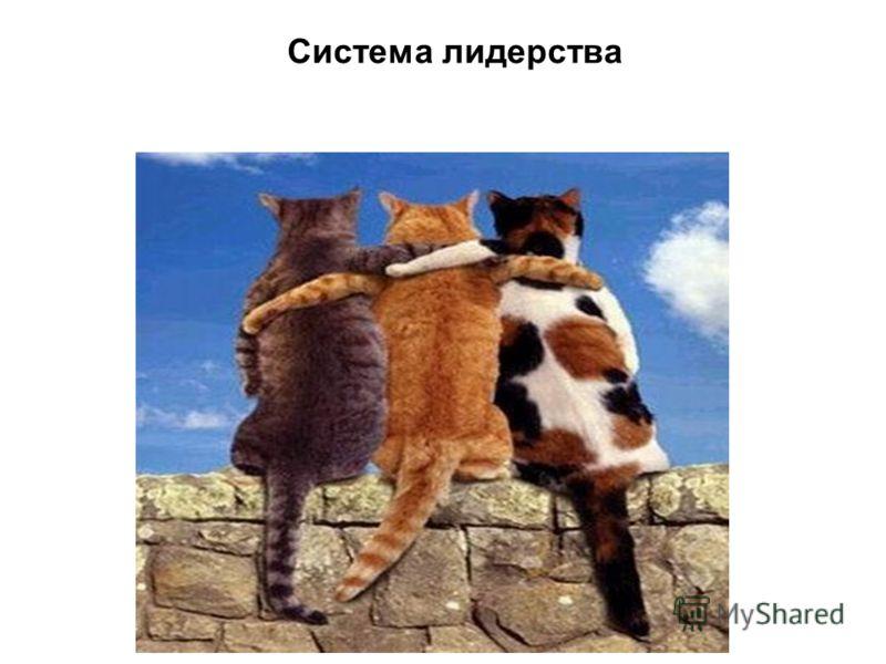 Система лидерства