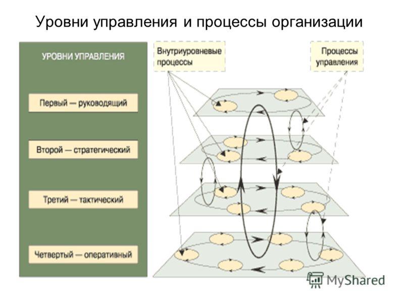 Уровни управления и процессы организации