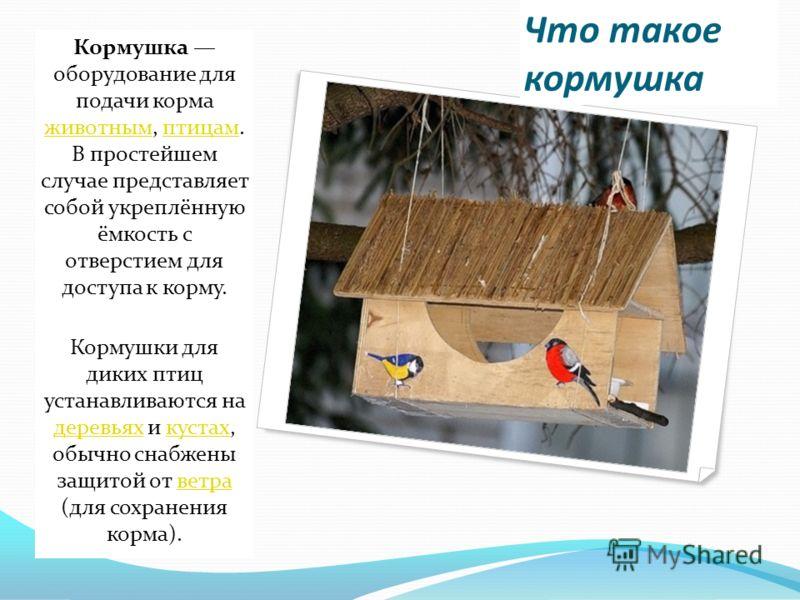 Для чего нужна кормушка в нашем городе? В нашем городе много различных лесопарков и садов, в которых обитает огромное количество птиц. Зимой, когда их естественная пища пропадает из-за холодов и снега, птицы прилетают ближе к людям искать тепло и про