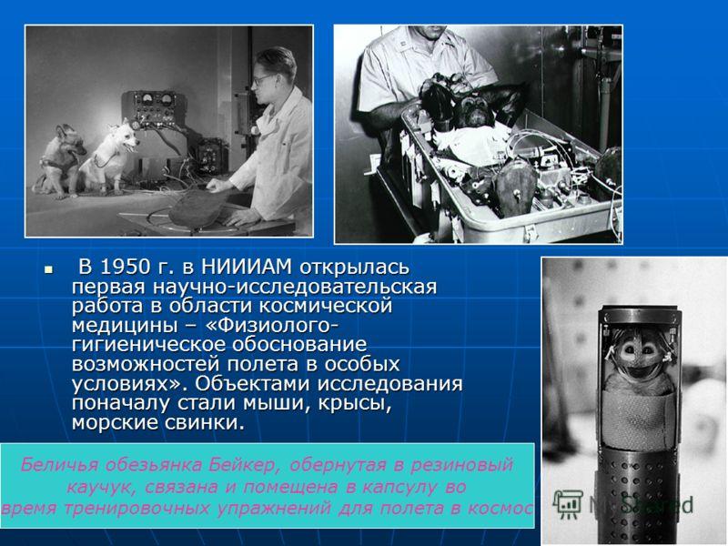 В 1950 г. в НИИИАМ открылась первая научно-исследовательская работа в области космической медицины – «Физиолого- гигиеническое обоснование возможностей полета в особых условиях». Объектами исследования поначалу стали мыши, крысы, морские свинки. В 19