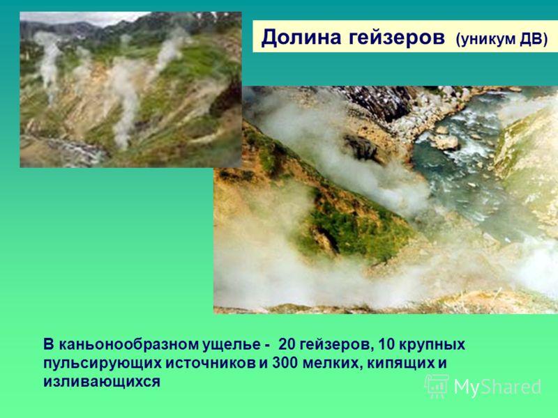 Долина гейзеров (уникум ДВ) В каньонообразном ущелье - 20 гейзеров, 10 крупных пульсирующих источников и 300 мелких, кипящих и изливающихся