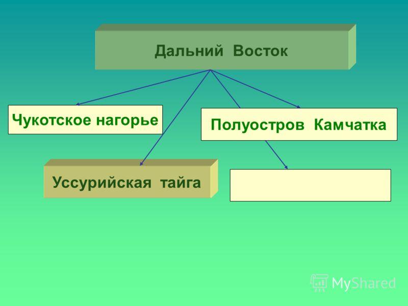 Дальний Восток Чукотское нагорье Уссурийская тайга Полуостров Камчатка