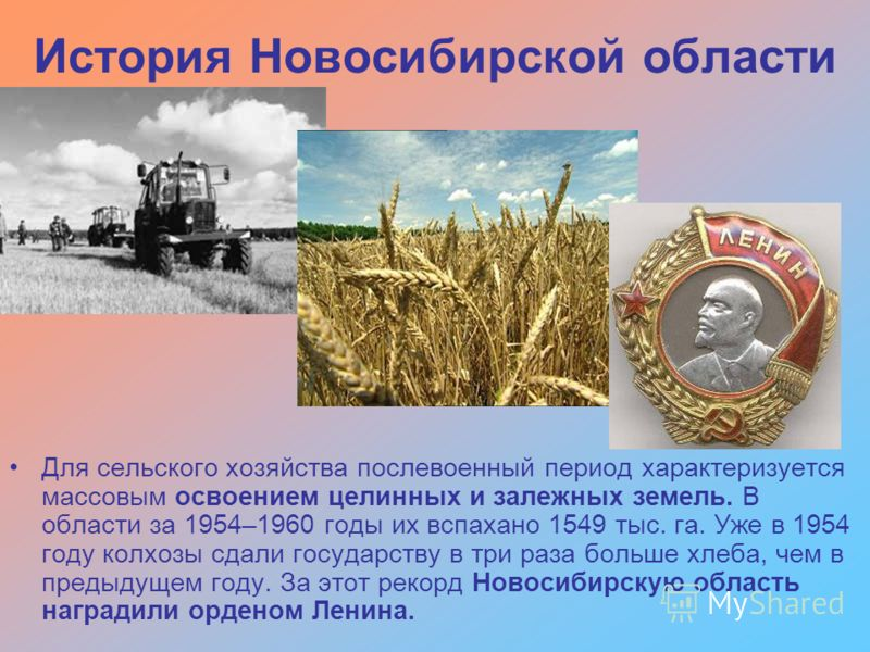 История Новосибирской области Для сельского хозяйства послевоенный период характеризуется массовым освоением целинных и залежных земель. В области за 1954–1960 годы их вспахано 1549 тыс. га. Уже в 1954 году колхозы сдали государству в три раза больше