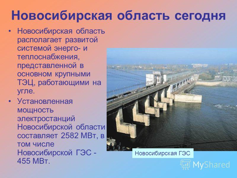 Новосибирская область располагает развитой системой энерго- и теплоснабжения, представленной в основном крупными ТЭЦ, работающими на угле. Установленная мощность электростанций Новосибирской области составляет 2582 МВт, в том числе Новосибирской ГЭС