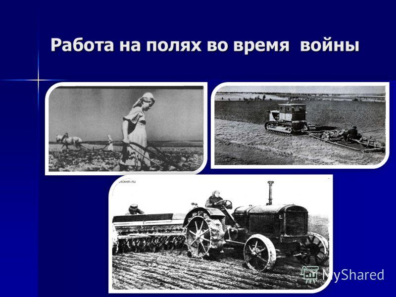 Работа на полях во время войны