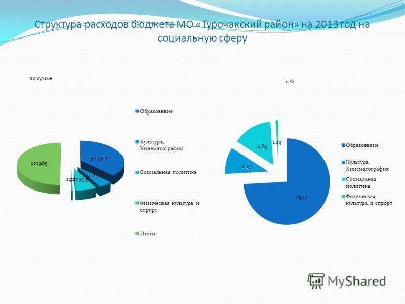 Структура расходов бюджета МО «Турочакский район» на 2013 год на социальную сферу по сумме в %