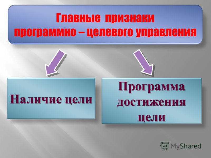 Наличие цели Программа достижения цели Главные признаки программно – целевого управления