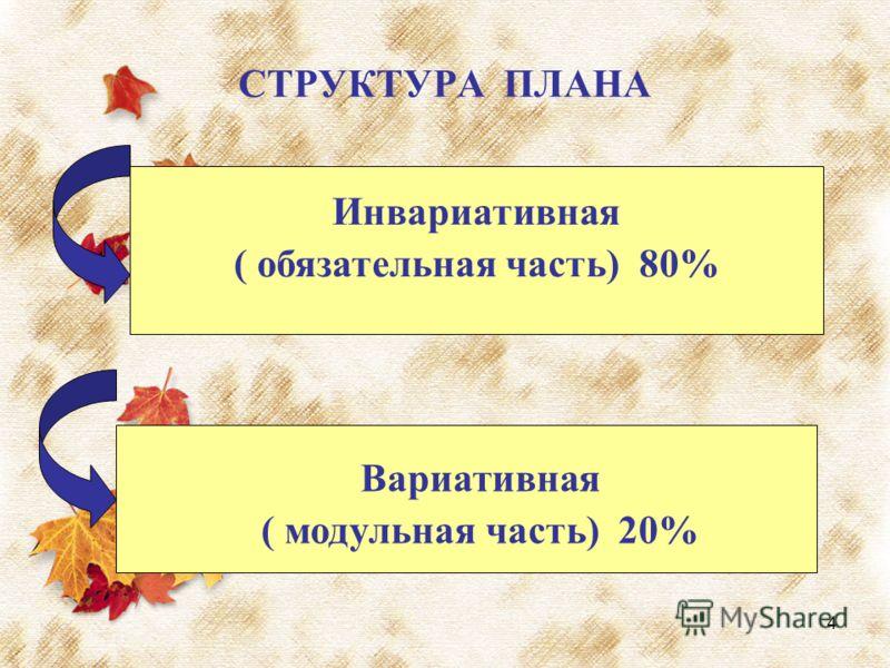 4 СТРУКТУРА ПЛАНА Инвариативная ( обязательная часть) 80% Вариативная ( модульная часть) 20%