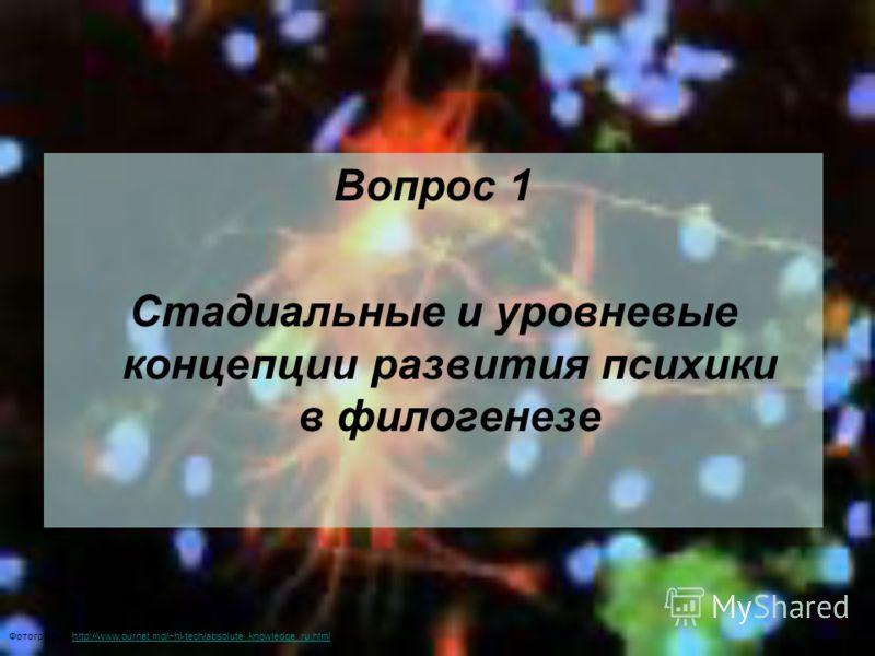 Вопрос 1 Стадиальные и уровневые концепции развития психики в филогенезе Фотография: http://www.ournet.md/~hi-tech/absolute_knowledge_ru.htmlhttp://www.ournet.md/~hi-tech/absolute_knowledge_ru.html