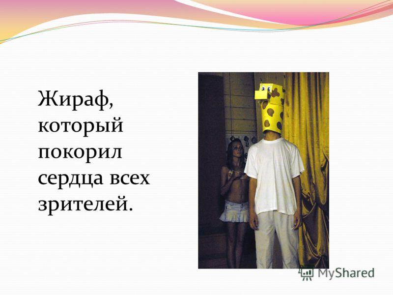 Жираф, который покорил сердца всех зрителей.