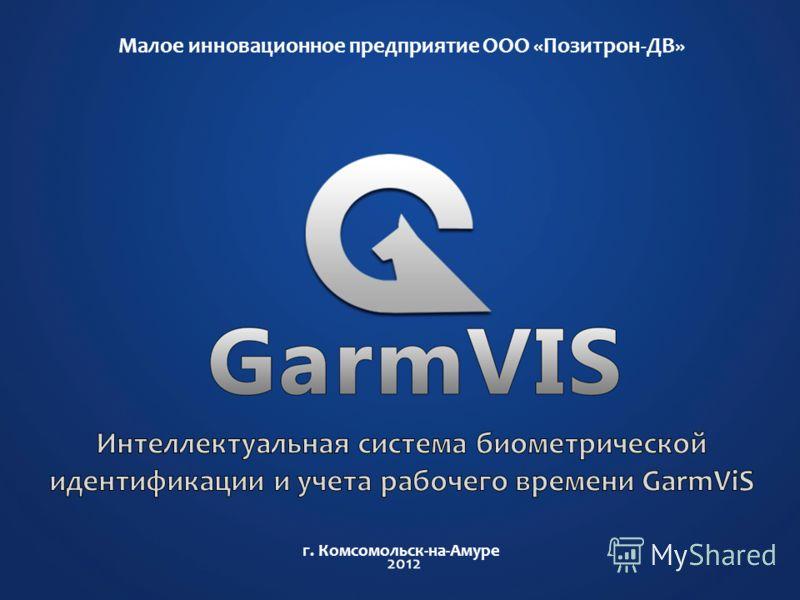 Малое инновационное предприятие ООО «Позитрон-ДВ» г. Комсомольск-на-Амуре