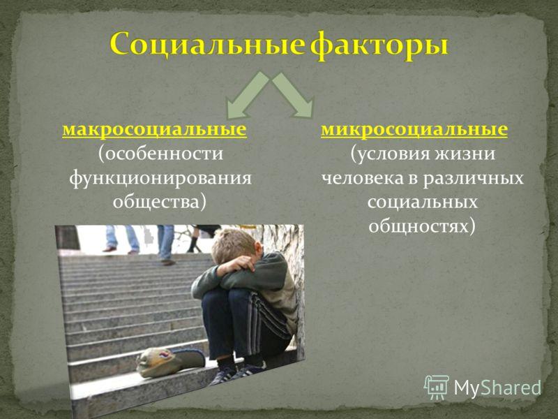 макросоциальные (особенности функционирования общества) микросоциальные (условия жизни человека в различных социальных общностях)