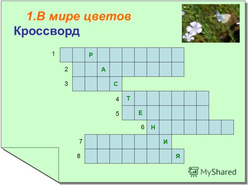 1.В мире цветов Кроссворд 1.В мире цветов Кроссворд Р А С Т Е Н И Я 1 2 3 4 5 6 7 8