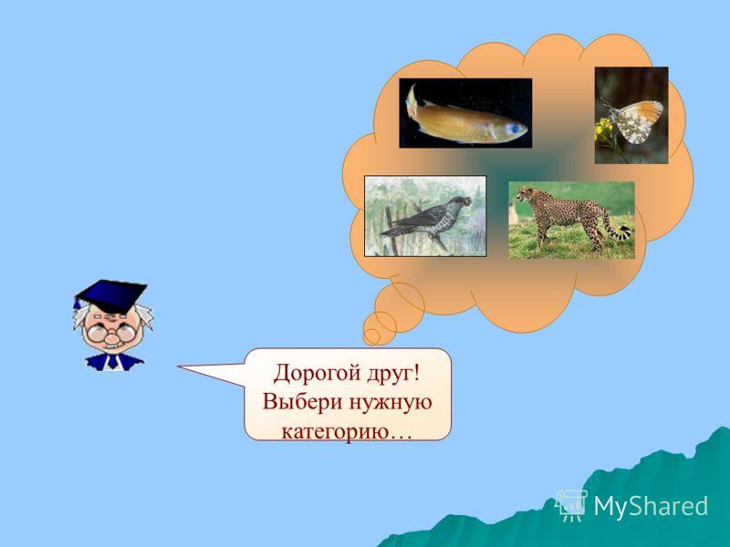 Проверь себя. Лишний среди рыб – кит. Он – млекопитающее животное. Лишний среди рыб – кит. Он – млекопитающее животное.