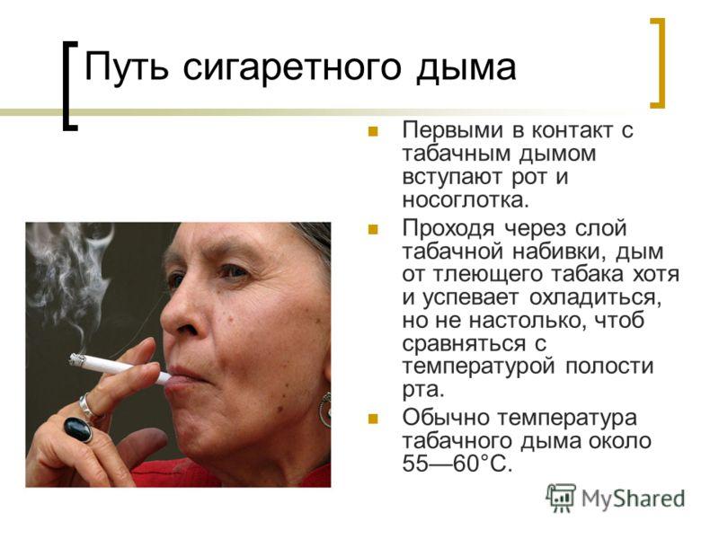 Путь сигаретного дыма Первыми в контакт с табачным дымом вступают рот и носоглотка. Проходя через слой табачной набивки, дым от тлеющего табака хотя и успевает охладиться, но не настолько, чтоб сравняться с температурой полости рта. Обычно температур