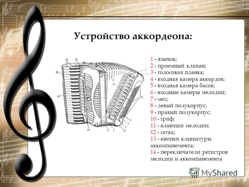 1 - язычок; 2 - проемный клапан; 3 - голосовая планка; 4 - входная камера аккордов; 5 - входная камера басов; 6 - входные камеры мелодии; 7 - мех; 8 - левый полукорпус; 9 - правый полукорпус; 10 - гриф; 11 - клавиши мелодии; 12 - сетка; 13 - кнопки к