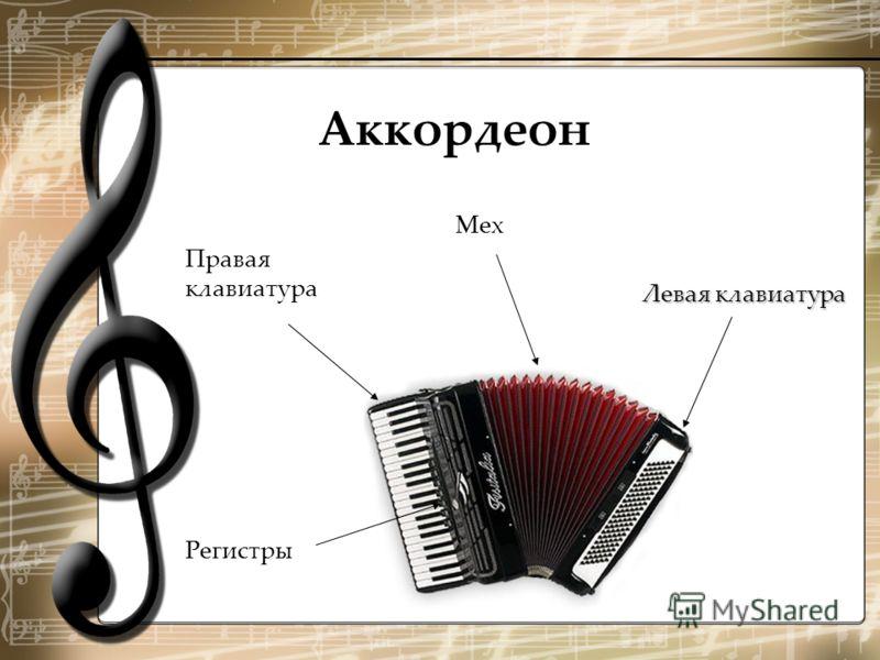 Аккордеон Правая клавиатура Регистры Мех Левая клавиатура