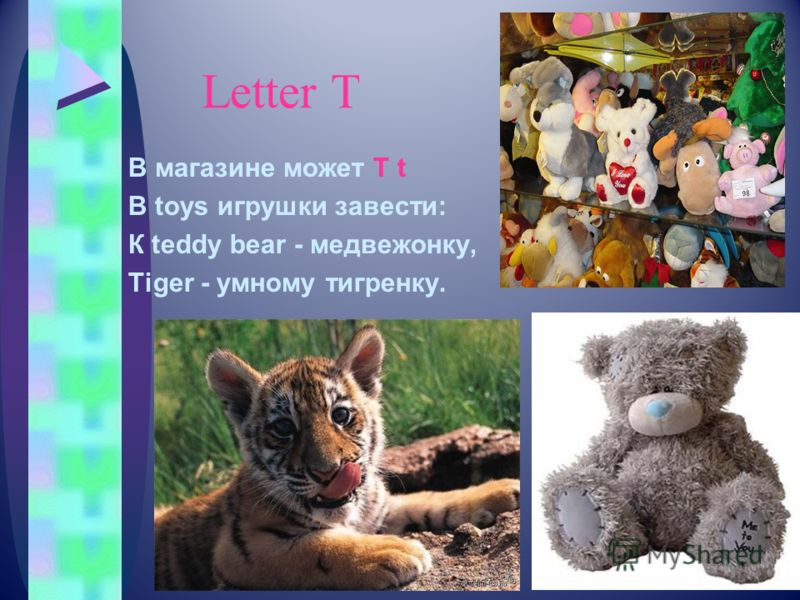 Letter Т В магазине может T t В toys игрушки завести: К teddy bear - медвежонку, Tiger - умному тигренку.