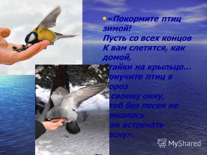 «Покормите птиц зимой! Пусть со всех концов К вам слетятся, как домой, Стайки на крыльцо… Приучите птиц в мороз К своему окну, Чтоб без песен не пришлось Нам встречать весну».