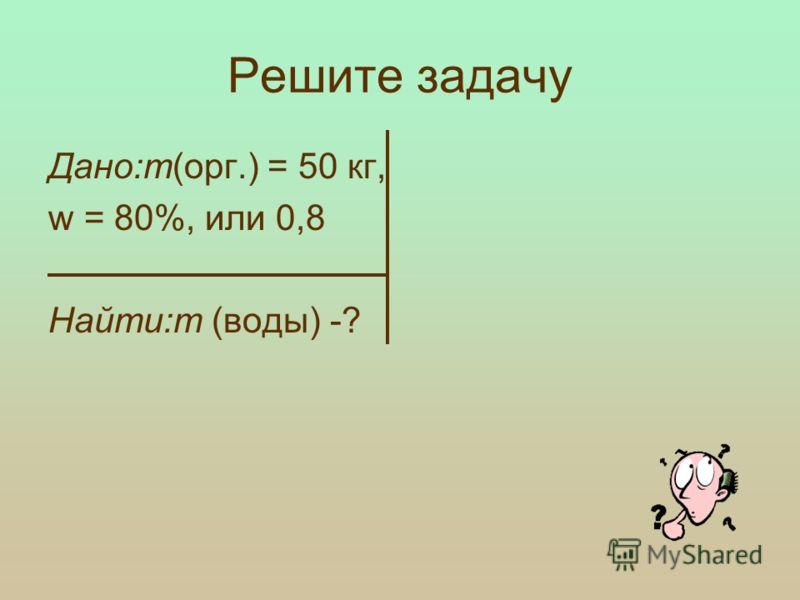 Руководитель Спириденок Ксения (вода)