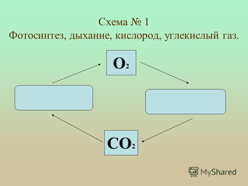 Составить следующие логические схемы: