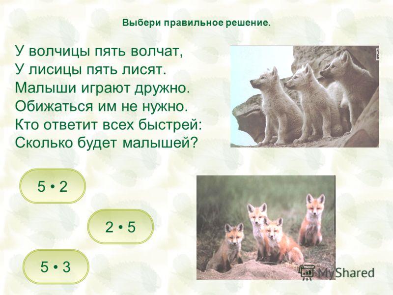 У волчицы пять волчат, У лисицы пять лисят. Малыши играют дружно. Обижаться им не нужно. Кто ответит всех быстрей: Сколько будет малышей? 2 5 5 3 5 2 Выбери правильное решение.