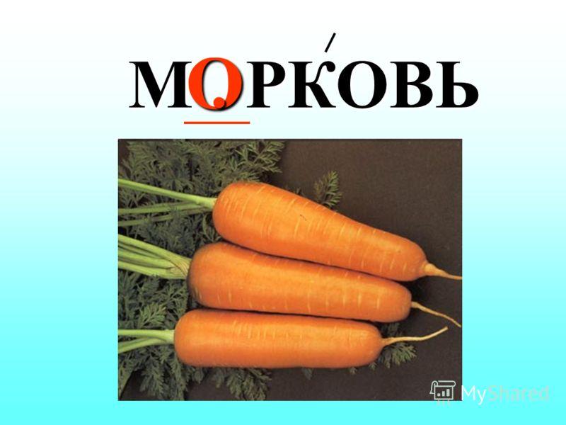 ОО М. Л. КО