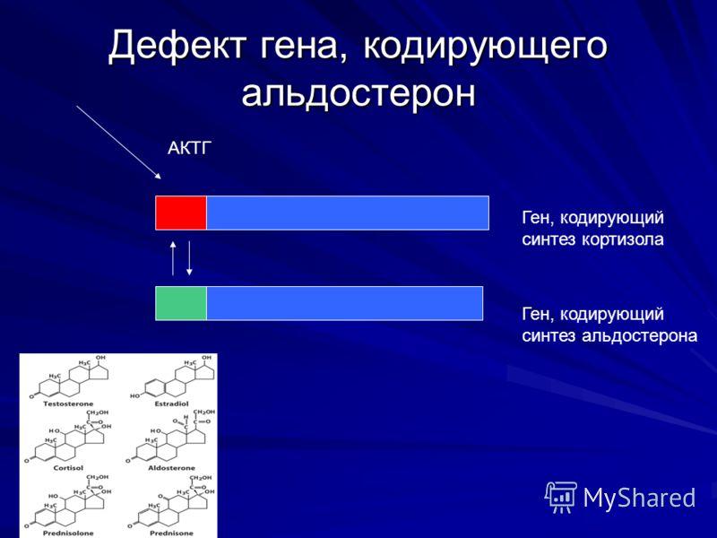 Дефект гена, кодирующего альдостерон Ген, кодирующий синтез кортизола Ген, кодирующий синтез альдостерона АКТГ