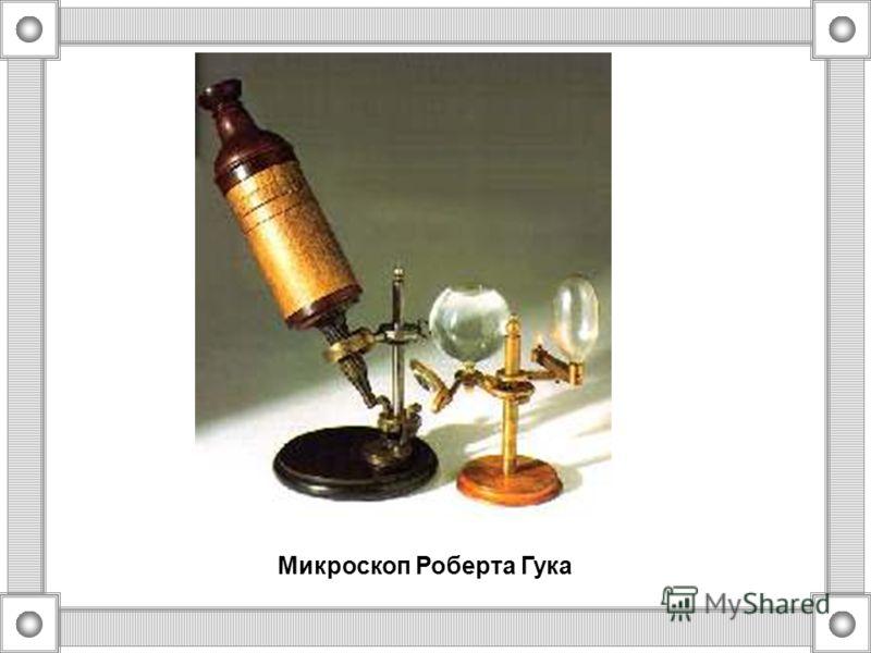 ГУК (Хук) Роберт (1635-1703) Впервые применил название клетка в середине XVII в. при рассмотрении под микроскопом, им сконструированным, тонкого среза пробки. Он увидел, что пробка состоит из ячеек - клеток (англ.